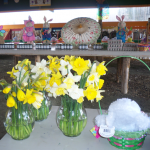 Spring Farm Market