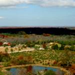 Farm Bird Eye View