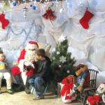 Santa's Farm Visit