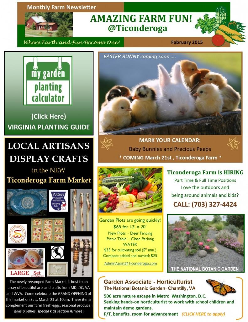 Newsletter February